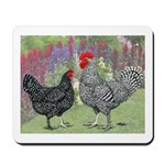 Marans Chickens Mousepad