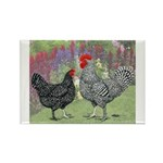 Marans Chickens Rectangle Magnet