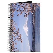 Mt. Fuji Journal