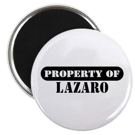Property of Lazaro Magnet