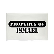 Property of Ismael Rectangle Magnet