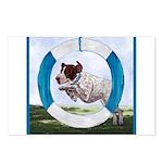 Agility German Shorthair Pointer Postcards (Packag