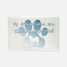 Tibetan Mastiff Grandchildren Rectangle Magnet (10