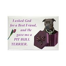 Pit Bull Terrier Rectangle Magnet (10 pack)