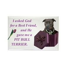 Pit Bull Terrier Rectangle Magnet