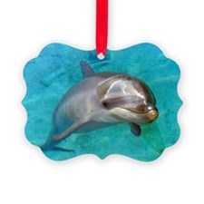 Dolphin Dip Picture Ornament