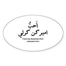 American Curl Cat Calligraphy Oval Decal
