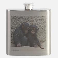 Chimpanzee002 Flask