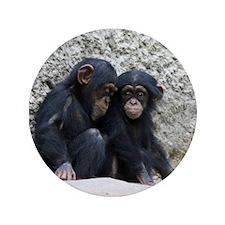 """Chimpanzee002 3.5"""" Button"""