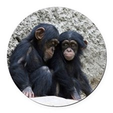 Chimpanzee002 Round Car Magnet