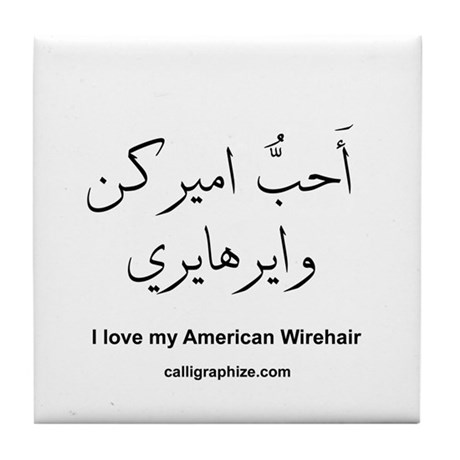 American Wirehair Cat Calligraphy Tile Coaster