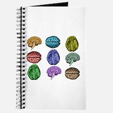 C Brain Journal