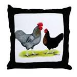 Black Sex-link Chickens Throw Pillow