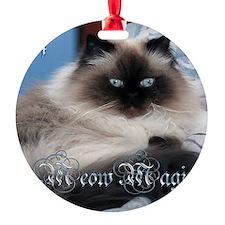 2014 Coco Calendar Cover Ornament