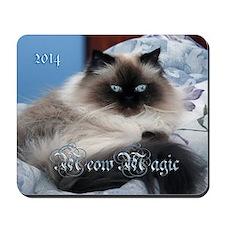 2014 Coco Calendar Cover Mousepad