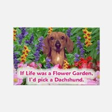 Dachshund (Red, Smooth) Rectangle Magnet