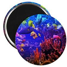 Neon Fish Magnet