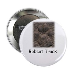 Bobcat Track Photo 2.25