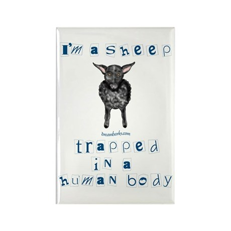 I'm a Sheep Rectangle Magnet (10 pack)