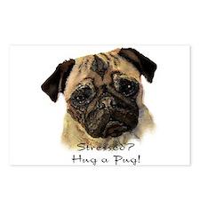 Stressed? Hug a Pug! Fun Dog Pet Quote Postcards (