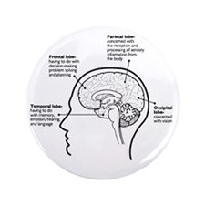 """Brain Functions 3.5"""" Button"""