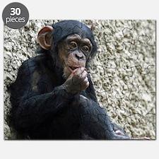 Chimpanzee003 Puzzle