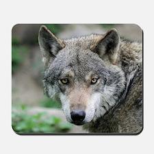 Wolf011 Mousepad