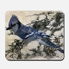 winter snow blue Jay nature country bird Mousepad