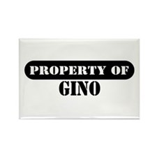 Property of Gino Rectangle Magnet