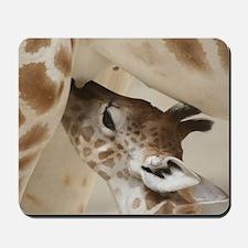 Giraffe003 Mousepad