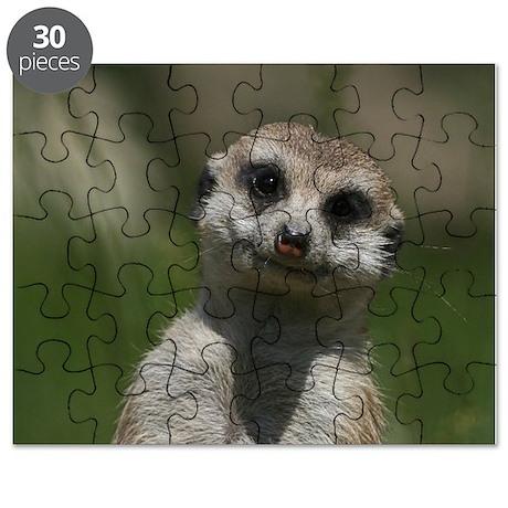Meerkat004 Puzzle