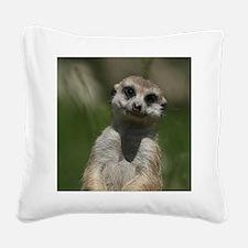 Meerkat004 Square Canvas Pillow