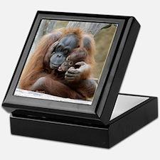 OrangUtan001 Keepsake Box
