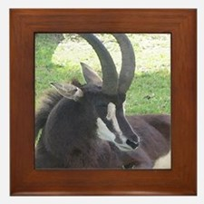 Sable Framed Tile