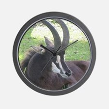 Sable Wall Clock