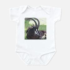 Sable Infant Bodysuit