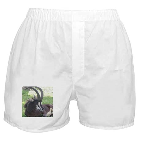Sable Boxer Shorts