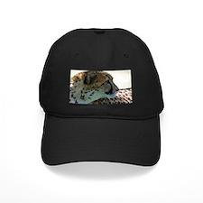 Cheeta Baseball Hat
