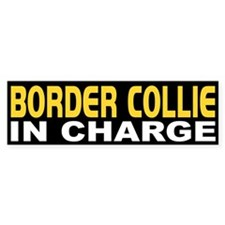 Border Collie In Charge Bumper Bumper Sticker