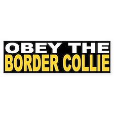 Obey the Border Collie Bumper Bumper Sticker