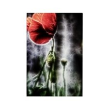 Electric Poppy Rectangle Magnet