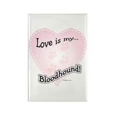 Love is my Bloodhound Rectangle Magnet