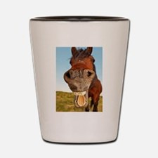 Funny Horse Shot Glass
