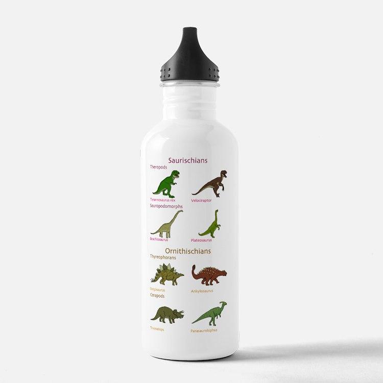 Dinosaur Classificatio Water Bottle