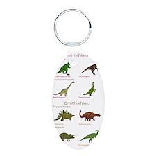 Dinosaur Classification Keychains