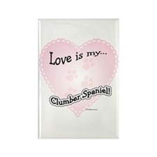 Love is my Clumber Spaniel Rectangle Magnet
