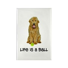 Goldendoodle Life Rectangle Magnet