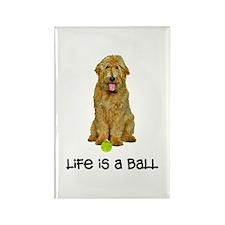 Goldendoodle Life Rectangle Magnet