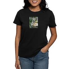 Robert H Treman Waterfall T-Shirt