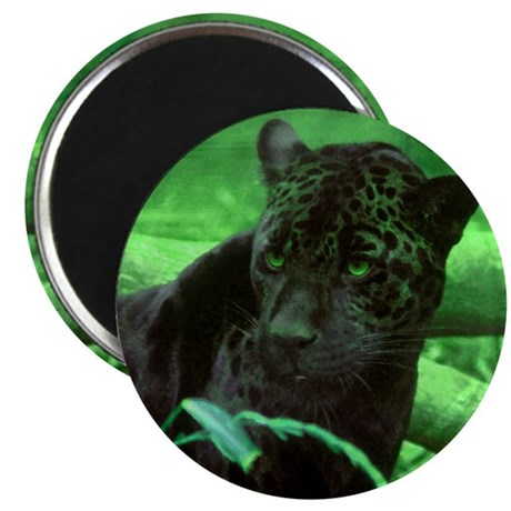 """Black Jaguar 2.25"""" Magnet (10 pack)"""